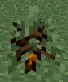 File:Rubber Tree Sapling.png