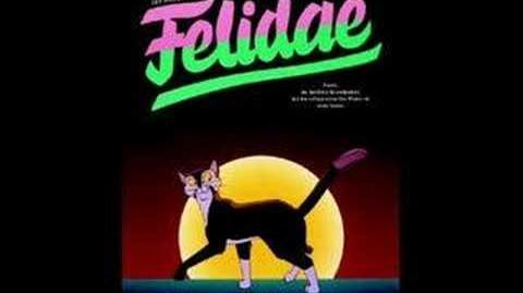 Felidae (Song)