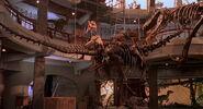 Jurassic-park-movie-screencaps.com-13823