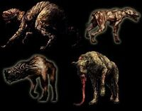 Dogs(SH)