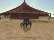 Crabfam