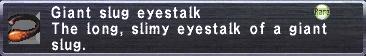 Giant slug eyestalk