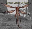 Eschan Puk