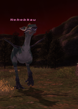 Nehebkau