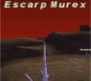 Escarp Murex