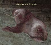 Decayed Flesh