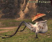 Shadow Funguar