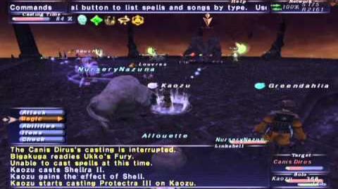 FFXI Walk of Echoes - Conflux 06 (Full Battle)