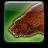 Warbear icon1