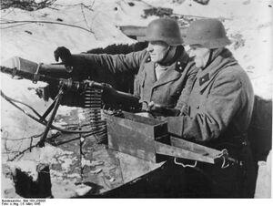 MG 81