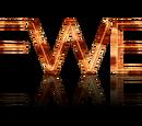 Fiction Wrestling Entertainment