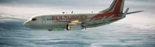 Plane 3602