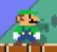 SMM costume 004 Luigi