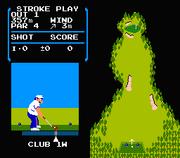 GolfNES
