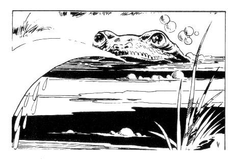 File:Spit Toad.jpg