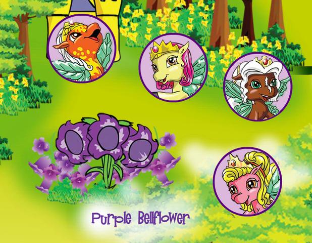 File:Purple Bellflower 1.png