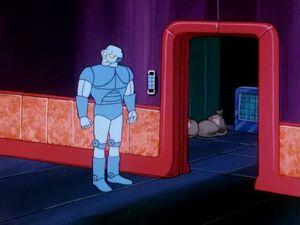 Robot Guarding