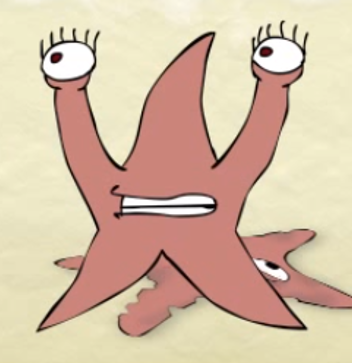 File:Starfish Cousin.png