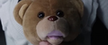 Olivia's Teddy Bear 2.png