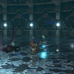 Second Chamber, versus Coeurls.