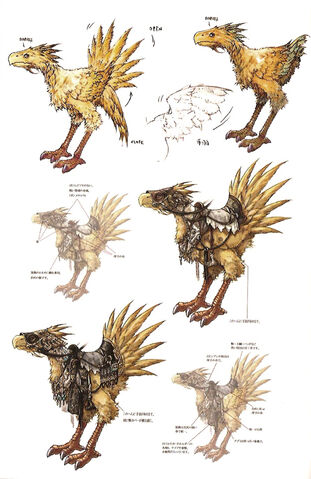 File:Chocobo artwork.jpg