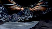 Bahamut-ZERO-vs-Shinryu-Celestia