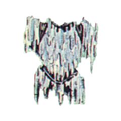 Ice Armor.