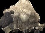 Sheep 1 (FFXI)