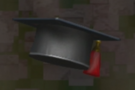 LRFFXIII Scholar's Mortarboard