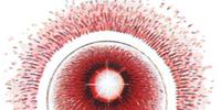 Nepto Eye