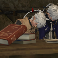 Alisaie and Alphinaud resting before a war.