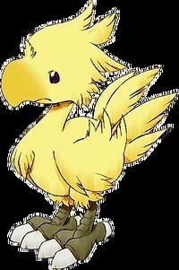 Чокобо появляются во многих играх Final Fantasy.