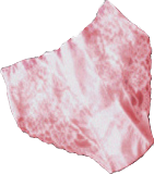 File:Tifa's Orthopedic Underwear.png