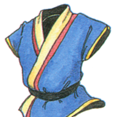 Black Belt Gi.