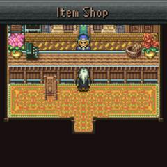 Tzen's item shop (GBA).