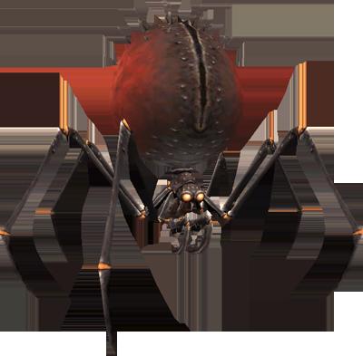 File:Spider 3 (FFXI).png