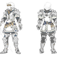 Paladin Artifact equipment concept art.