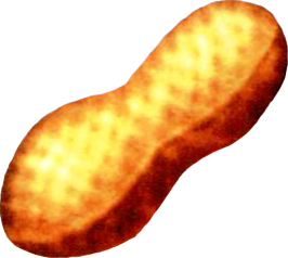 File:Zeio Nut.png