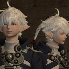 Alphinaud and Alisaie properly meet the Adventurer again in <a href=