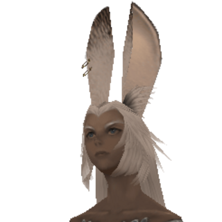 Salve Maker viera in <i>Final Fantasy XII</i>.