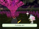 Forbidden Art