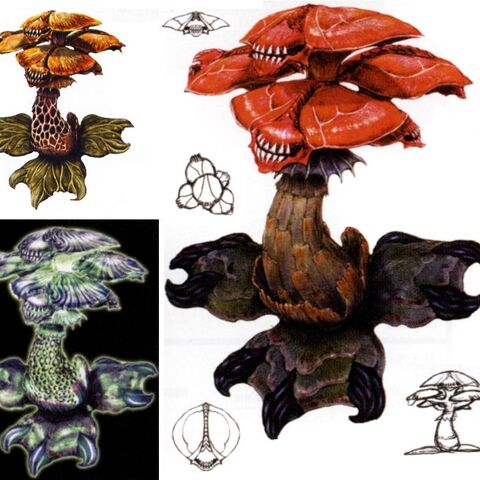 Concept Art of Different Fungus-type Fiends.