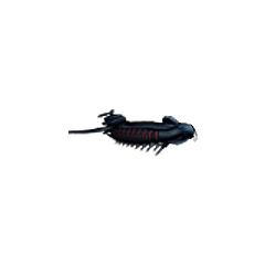 <i>Лунный Кит</i> на сайте DS-ремейка <i>Final Fantasy IV</i>.