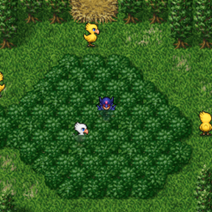 Chocobo Forest (PSP).