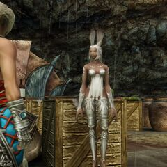 Relj is the only viera at Mt Bur-Omisace.