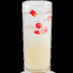 Drink of Summoner