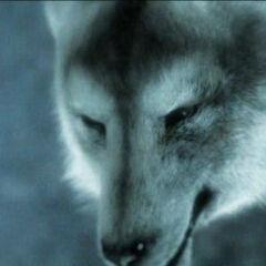 Close-up of Fenrir in <i>Final Fantasy VII: Advent Children</i>.