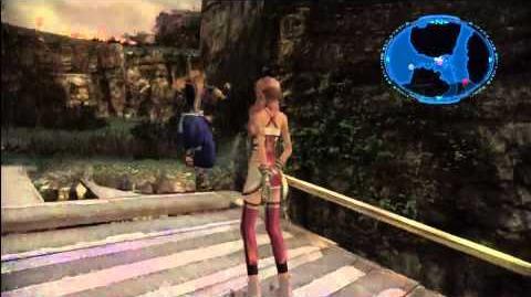 Final Fantasy XIII-2 Glitch Uh, Noel..
