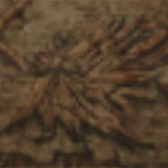 Engraving of Phoenix.