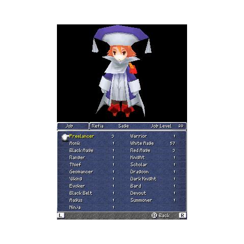 Job menu (DS).